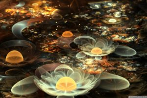 abstract_flowers_6-wallpaper-1920x1080