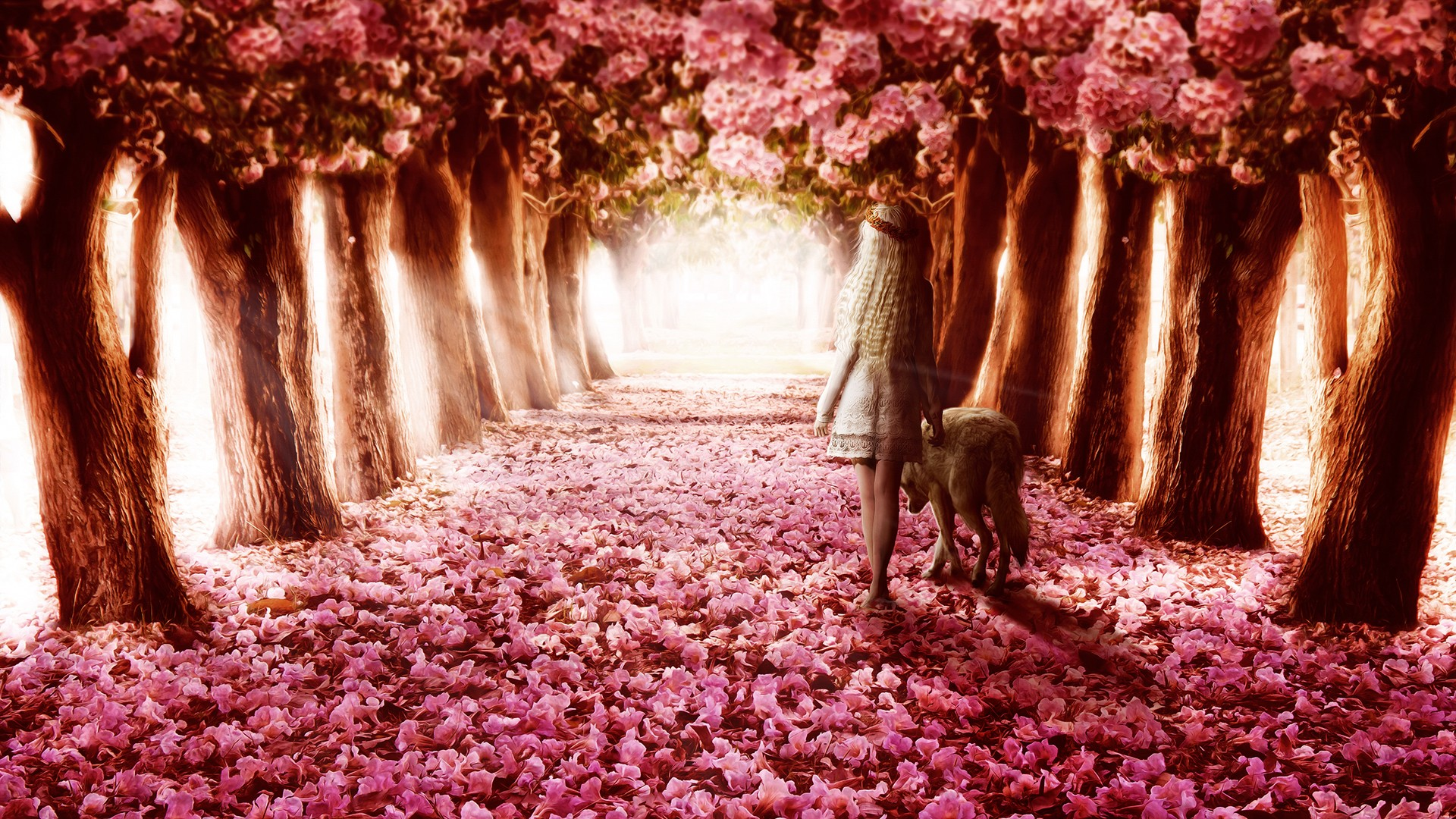 Flower Path Wallpapers