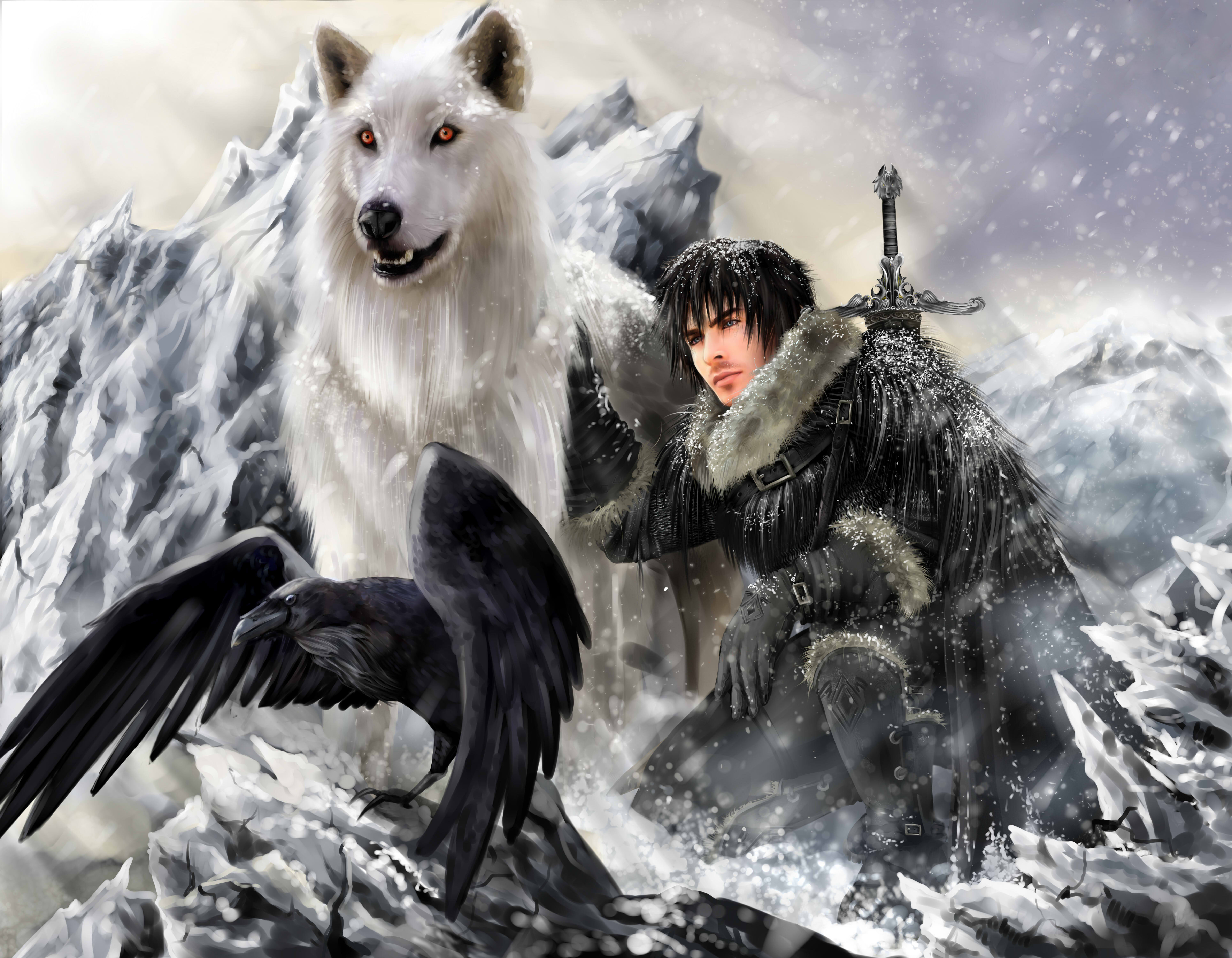 The song of ice and fire Game of thrones Jon snow Ghost Direwolf Stark clan