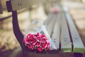 bouquet_bench_carnations_close_up_blurred_94619_2560x1600