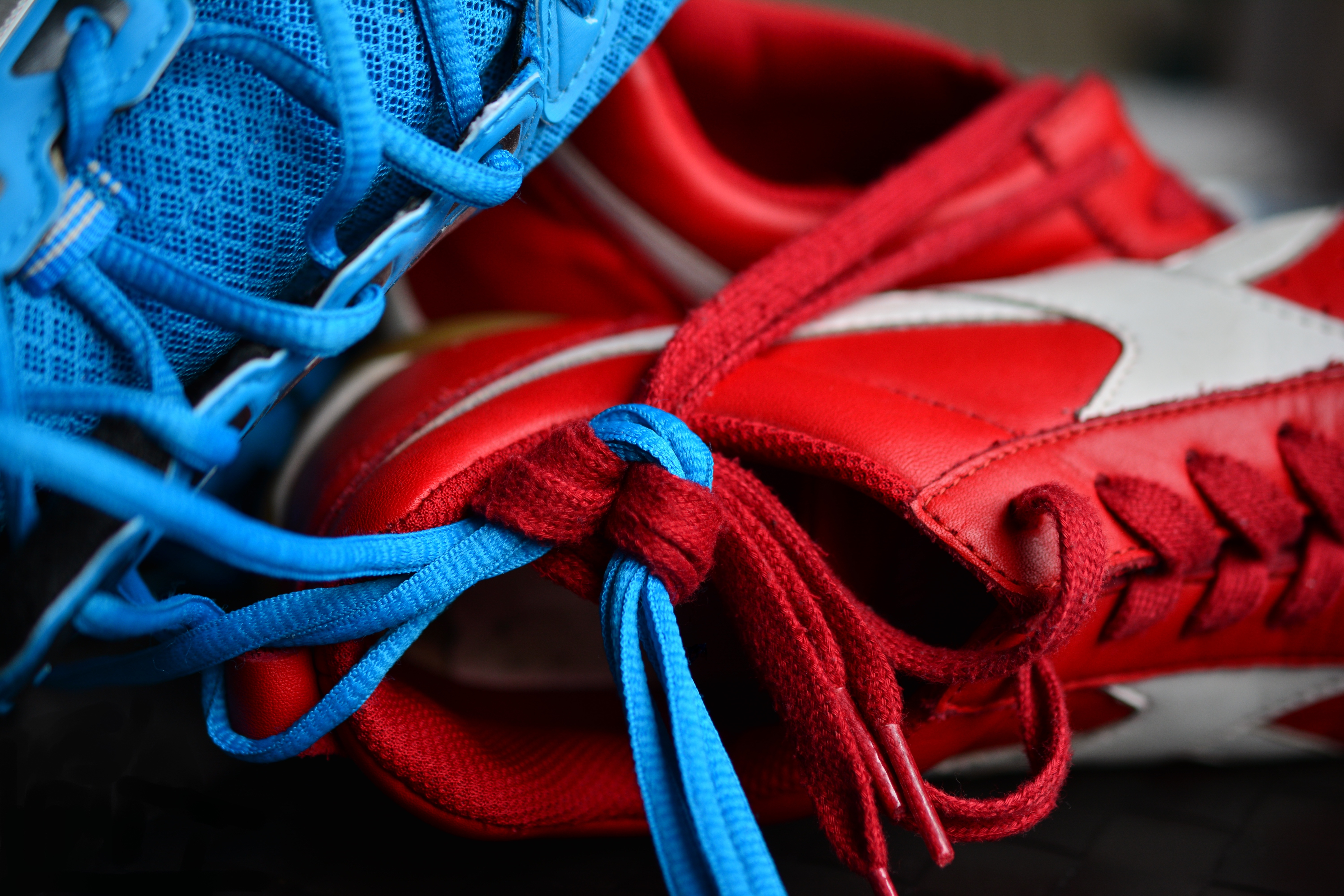 Sneakers Shoelaces Sports