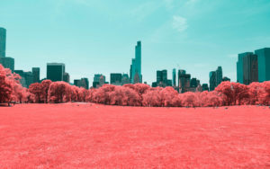 NYC Central Park Infrared 4K Wallpapers