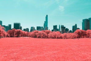 NYC Central Park Infrared 4K