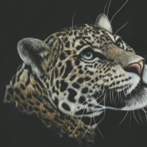 Leopard Artwork Paint 4K Wallpapers