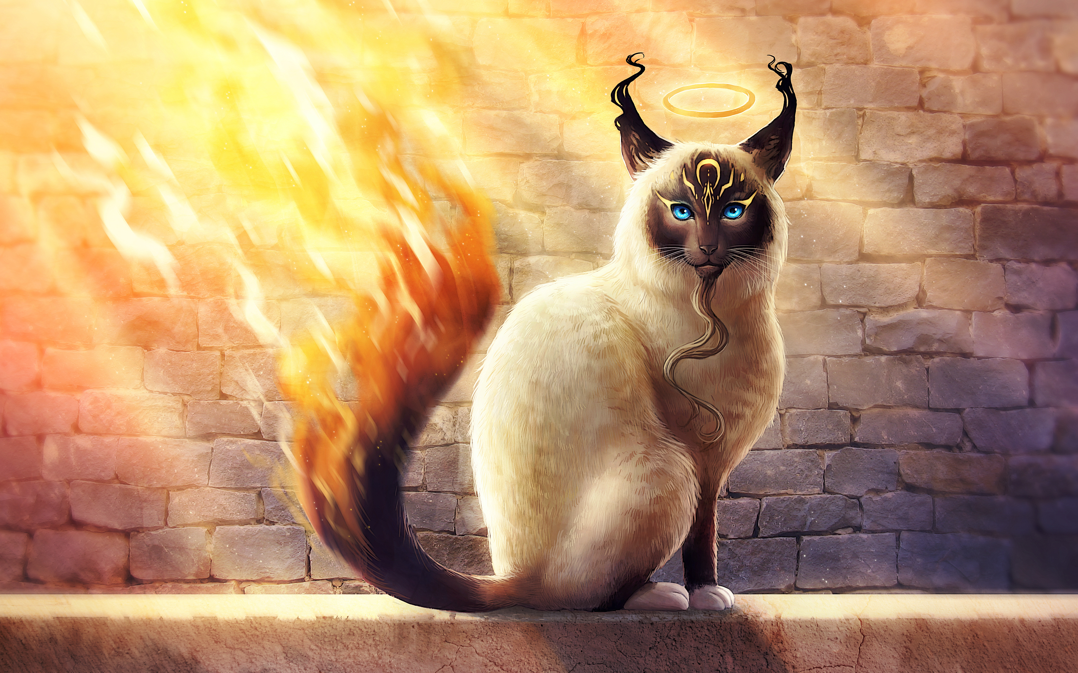 Birman Catamancer 4K Wallpapers