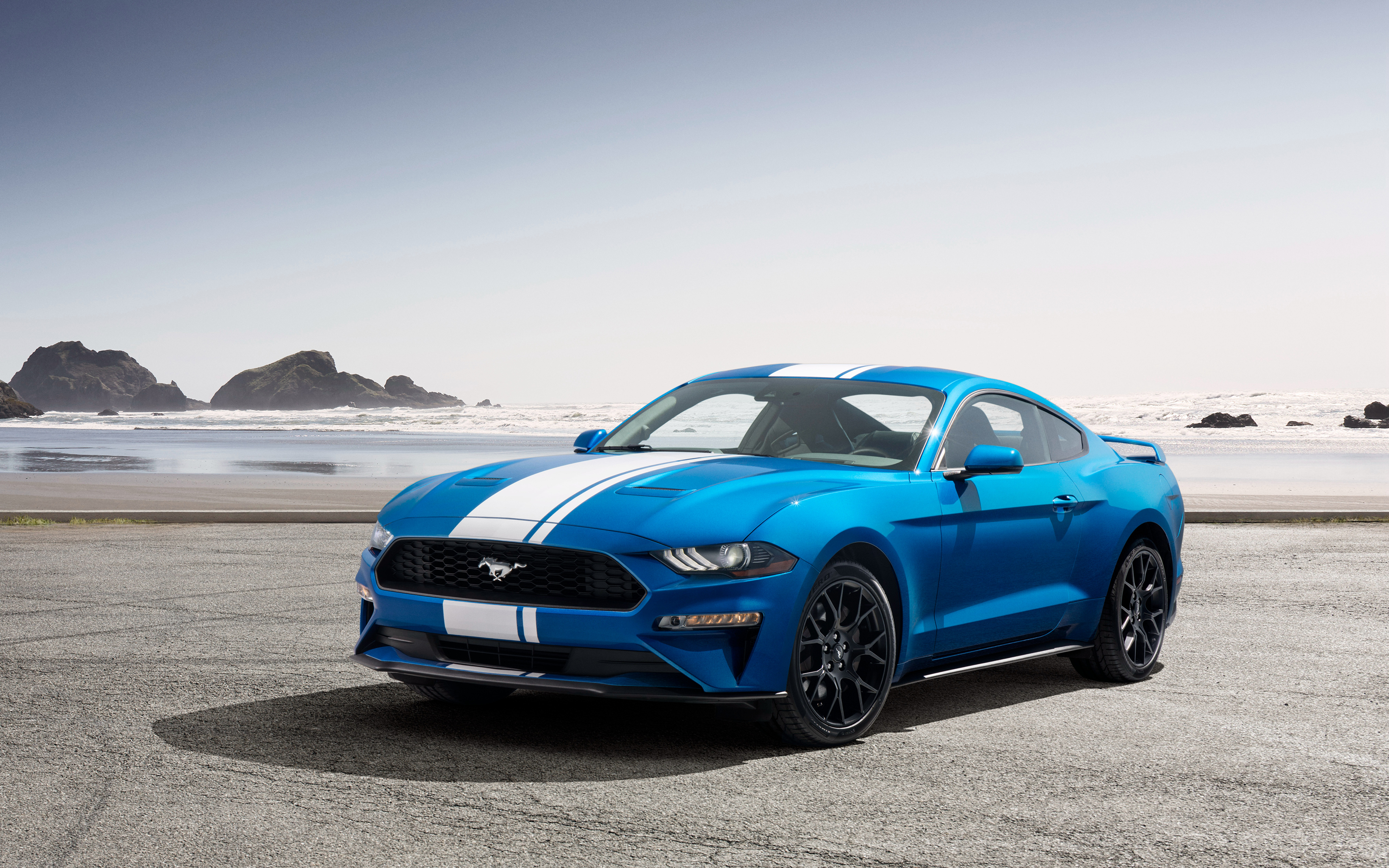2019 ford mustang ecoboost performance pack 4k wallpapers hd wallpapers