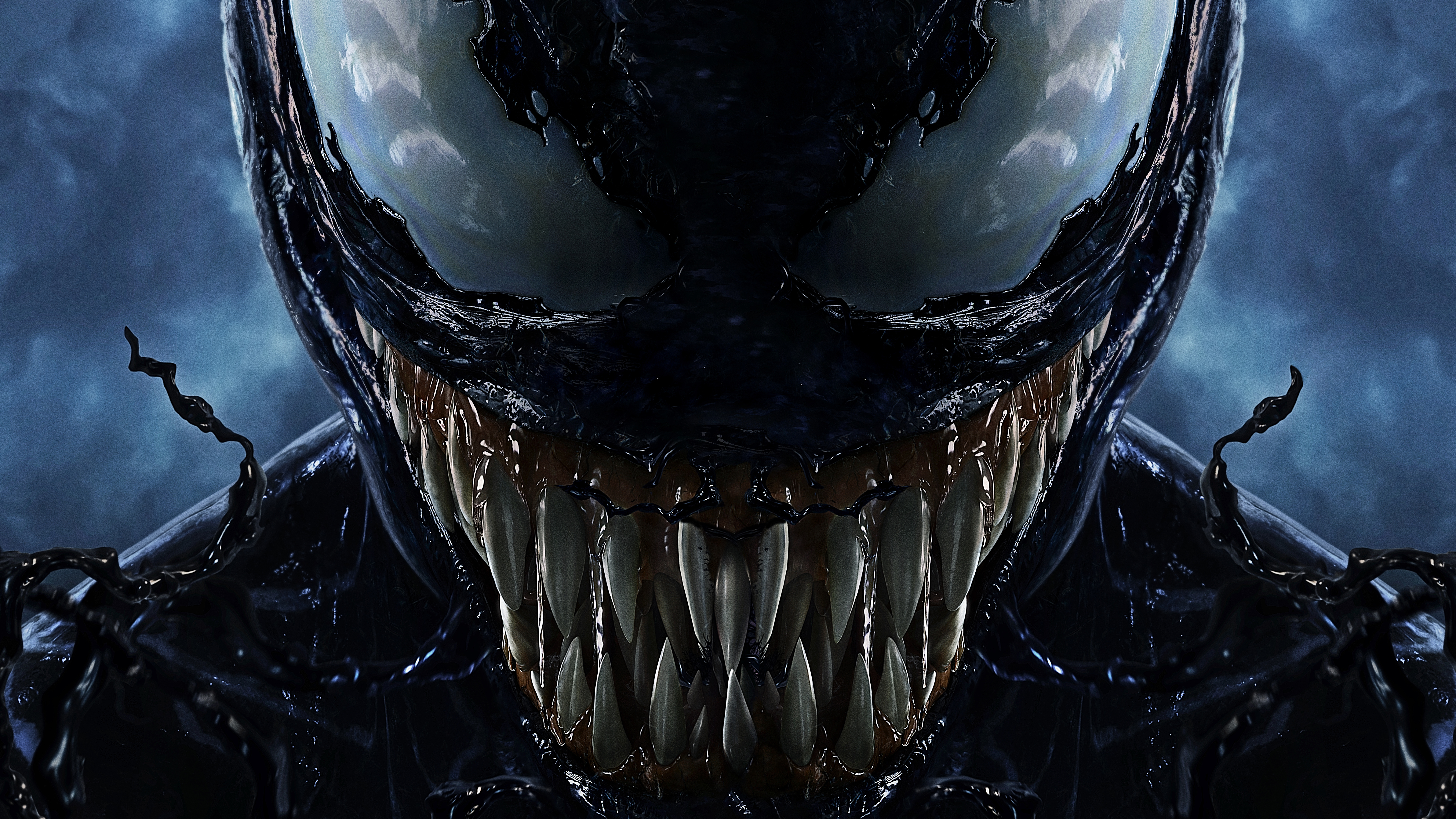 Venom 4k 8k Wallpapers Hd Wallpapers