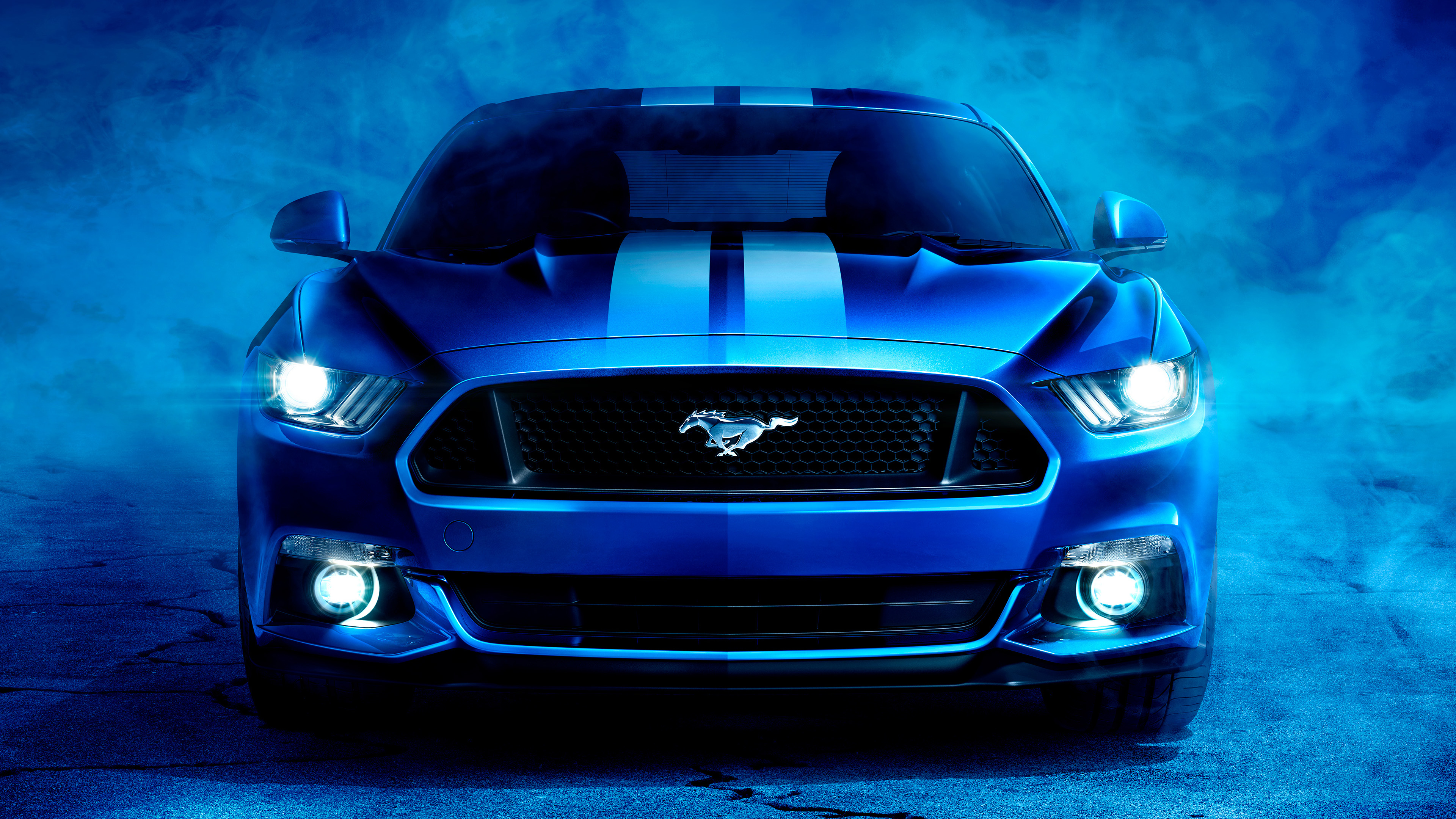 Ford Shelby Mustang 4K Wallpapers | HD Wallpapers