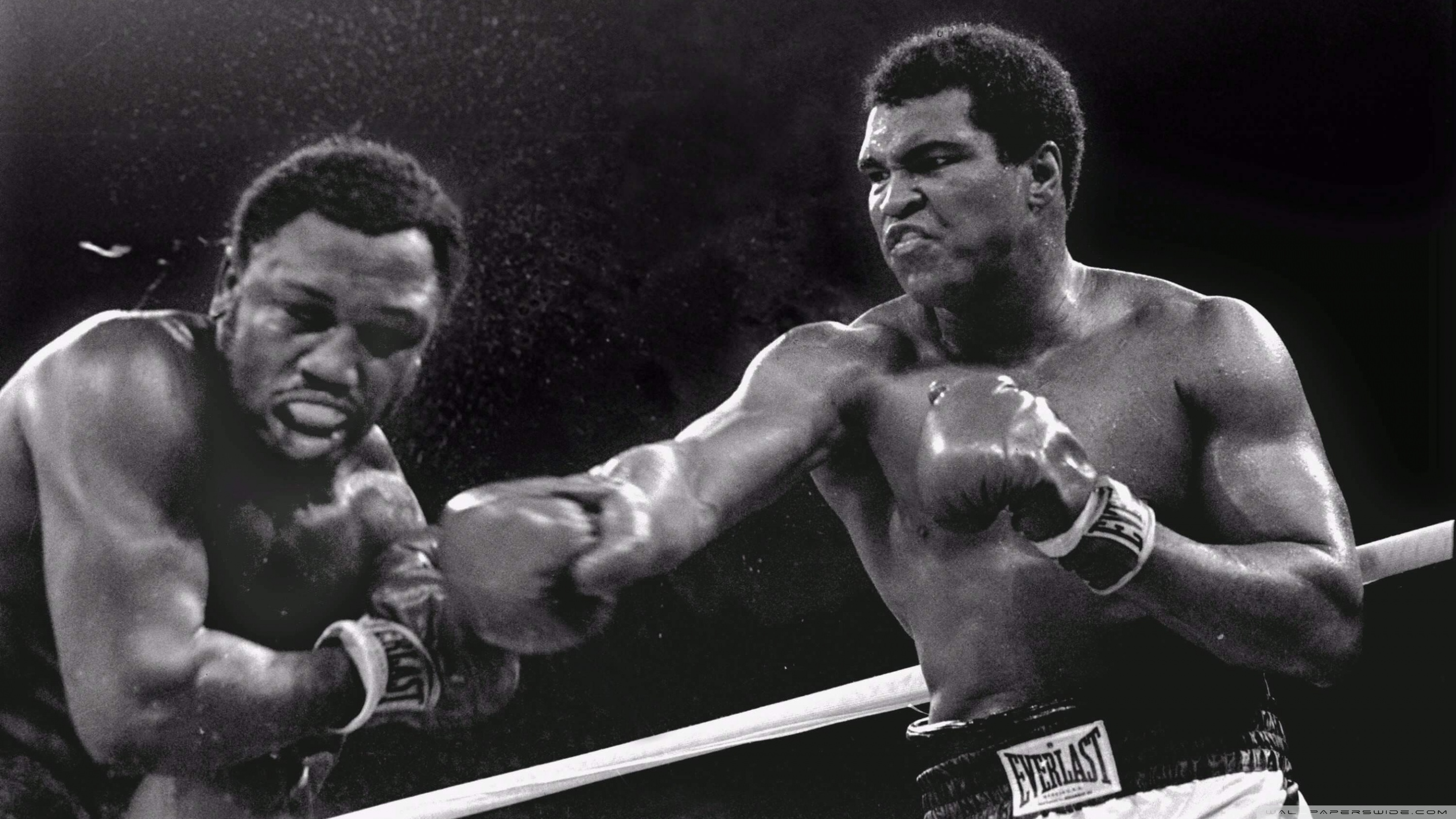 Muhammad Ali Hd Wallpaper Hd Wallpapers