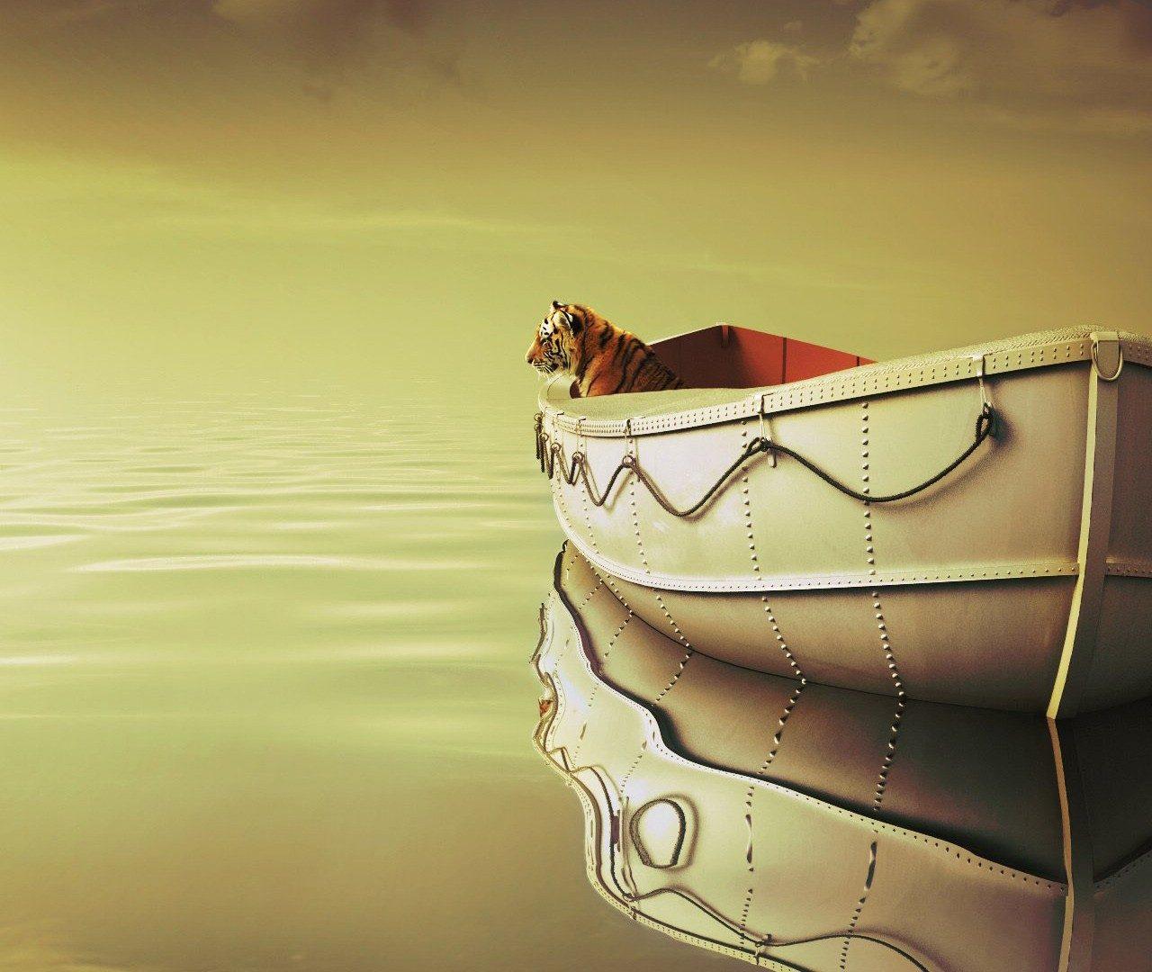 Life Of Pi Boat Tiger Wallpaper   HD Wallpapers