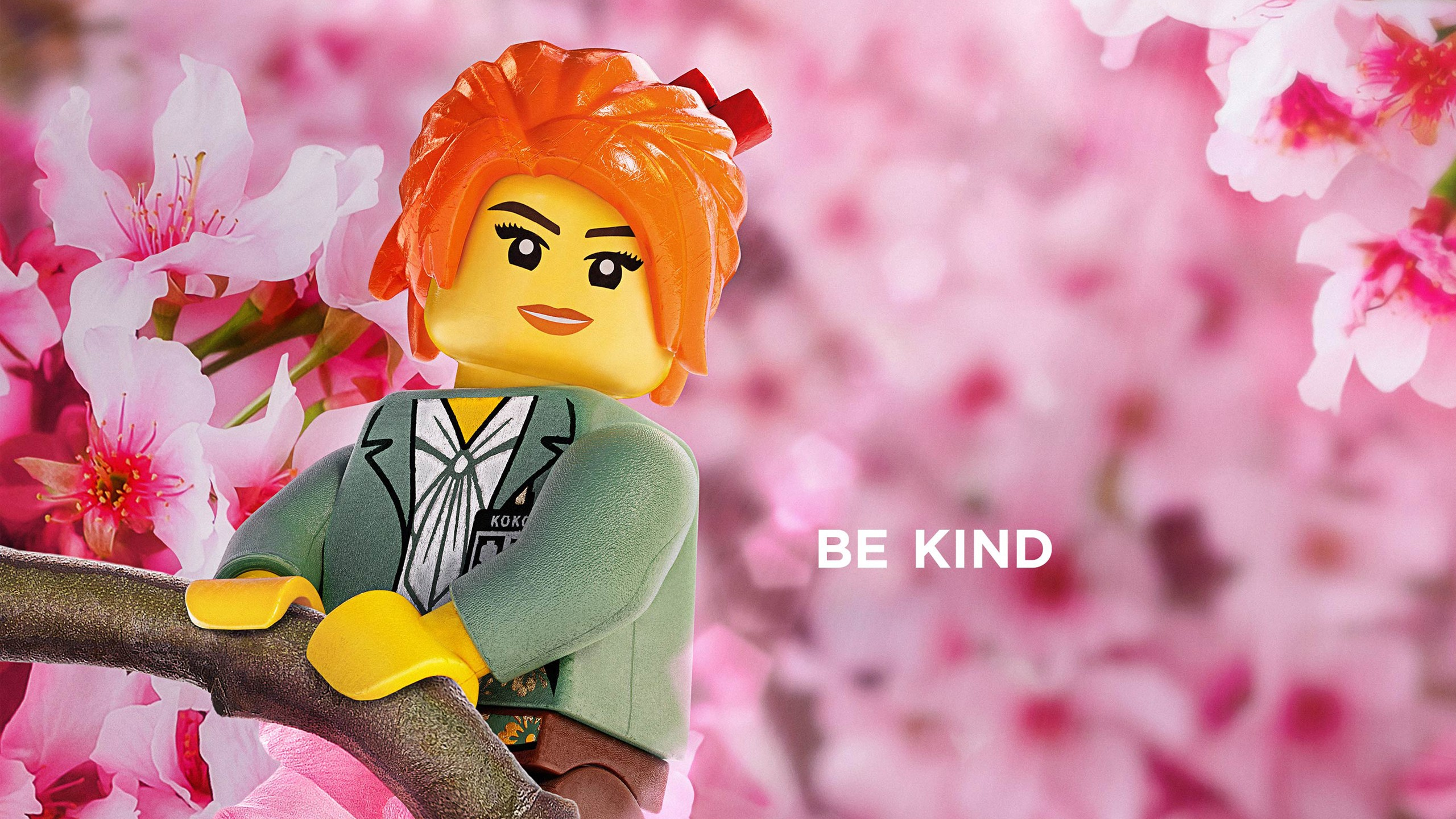 Misako Be Kind The LEGO Ninjago Movie 2017 Wallpapers
