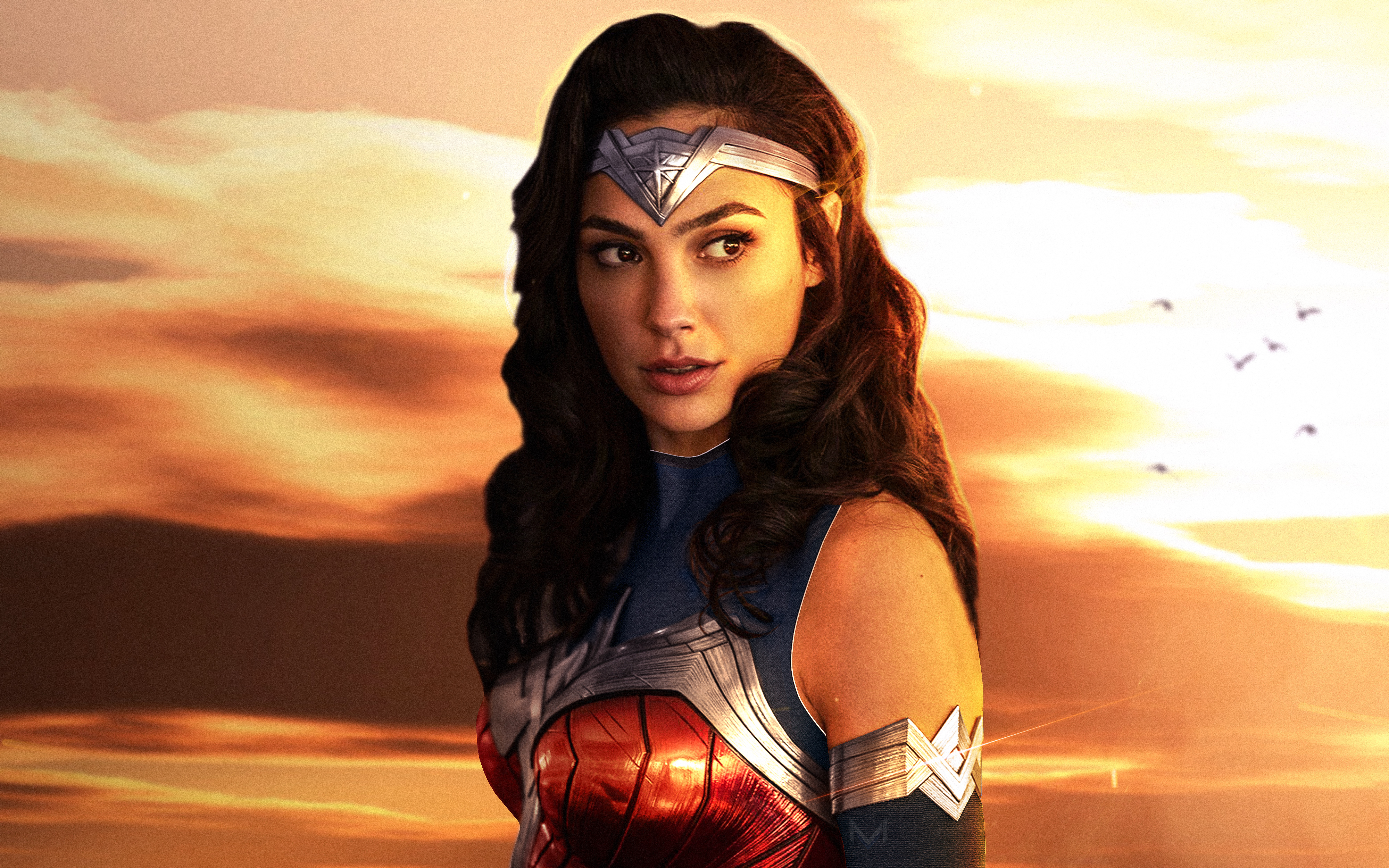 Gal Gadot As Wonder Woman Wallpapers Hd Wallpapers
