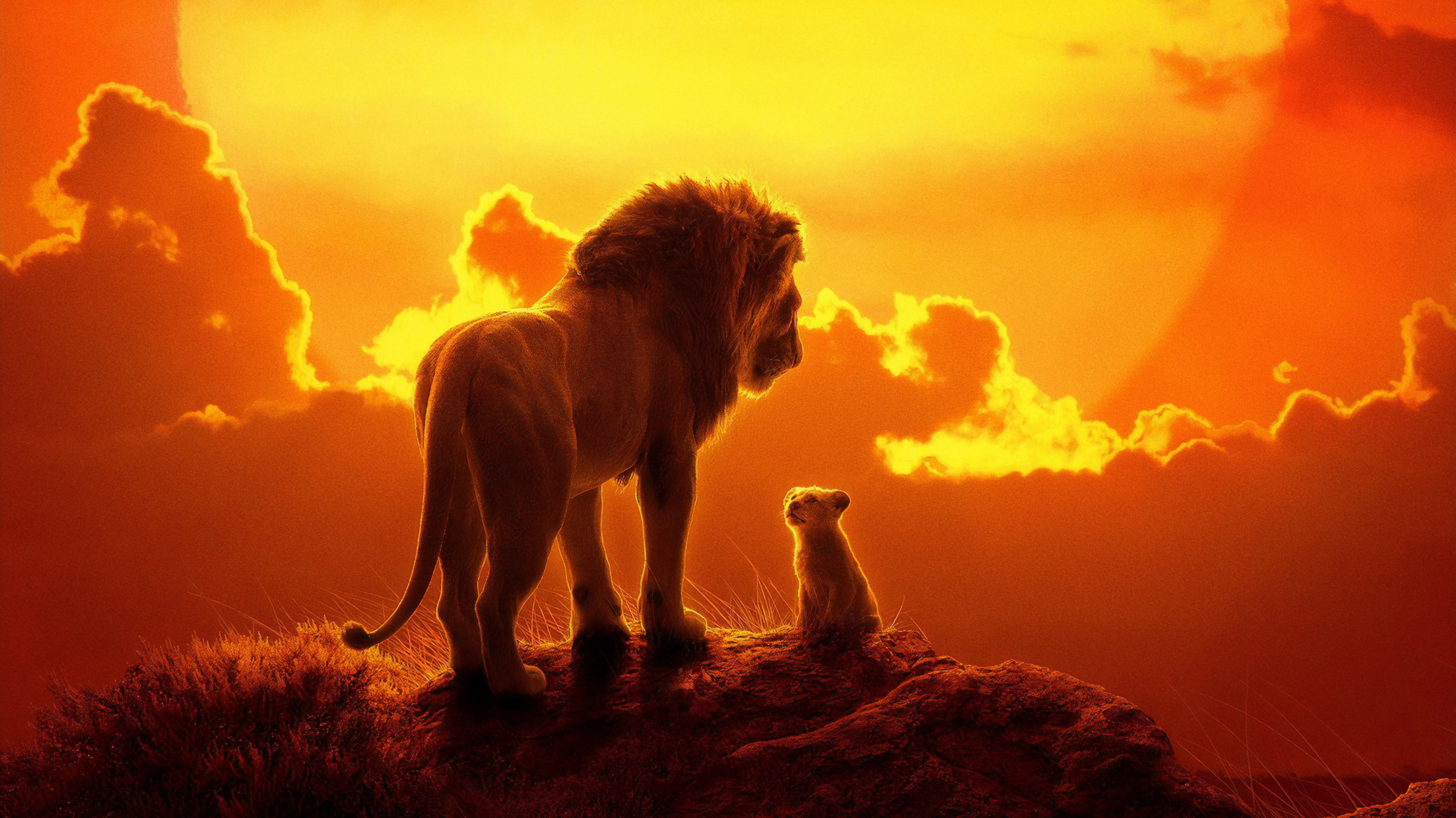 The Lion King 2019 Wallpapers Hd Wallpapers